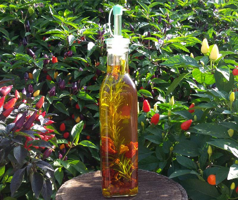 Olio piccante aromatizzato al rosmarino - Seminala