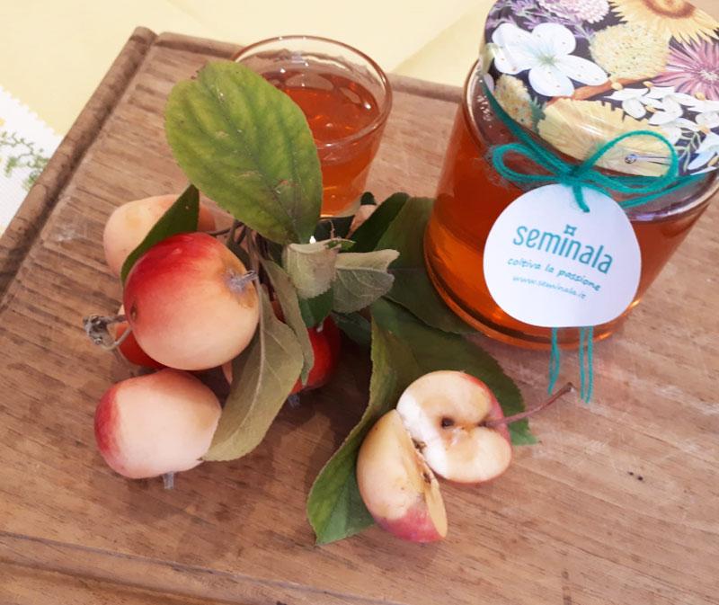 Gelatina di mele selvatiche, Ricette di Seminala