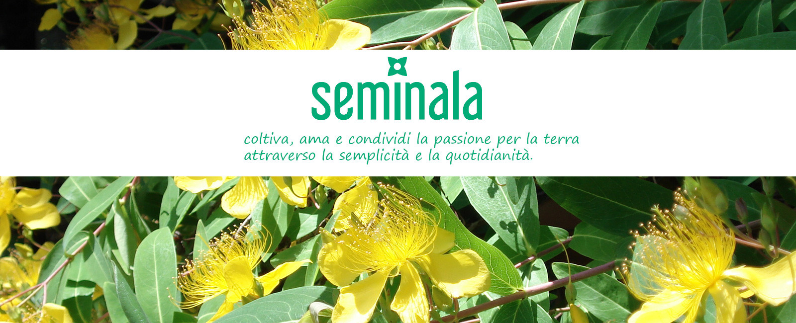 Seminala, coltiva la tua passione per la terra.