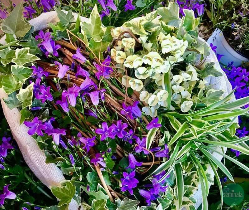 Festa della mamma, un cuore, composizione floreale, Seminala